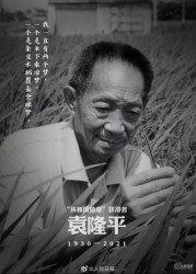 """痛悼!袁隆平逝世,享年91岁!记住这位让中国人""""端牢饭碗""""的英雄"""